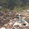 Operación Rubbish vs. Ex-Mayor