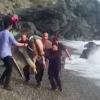 Swimmers Rescued in Almuñécar