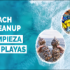 Saturday 6th Beach Clean-Up