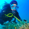 Cambriles Seabed Clean Up
