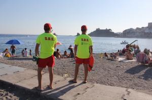 ALM Lifeguards sp17