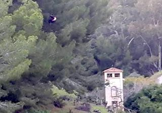 Paraglider Rescued from Tree