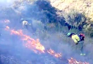 AXA Torrox Wildfire 03:19