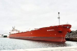 Largest Bulk-Carrier Docks