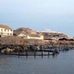 SAL fishfarm