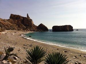 ECO Playa Rijana OnL