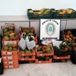 ALM Confiscated Goods OnL