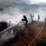 ALP mountain fires OnL