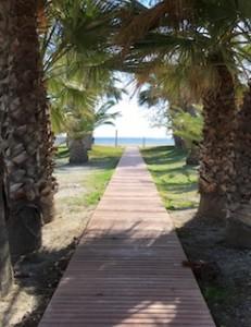 MOT Playa Poniente 01