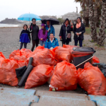 ALM Beach Plastic Clean Up
