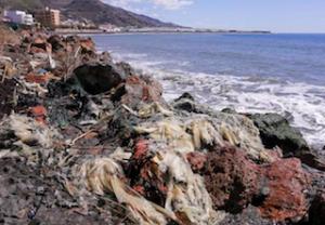 ECO Playa Pozuelo, Albuñol