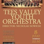 ALM TEES VALLEY YOUTH ORCHESTRA