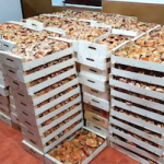 ALP Confiscated Mushrooms