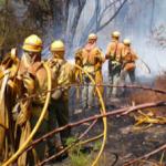 ALP Forest Fire Infoca
