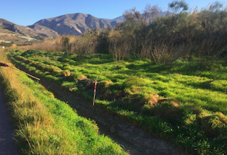 SAL Lobres Camino de Santa Ana