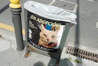 ALM Adopt a Pet Campaign