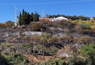 LHR Hill Fire