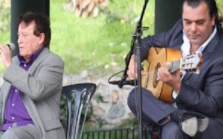ALM Bonsai Flamenco