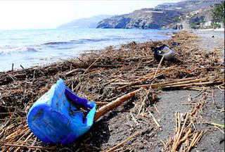 ECO Beaches Strewn with Debris Sep 2019