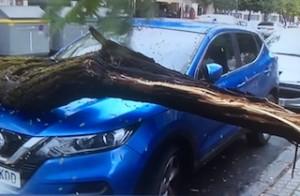 GRA Storm Damage 22NV19