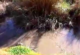 MOT Sewage in Barranco