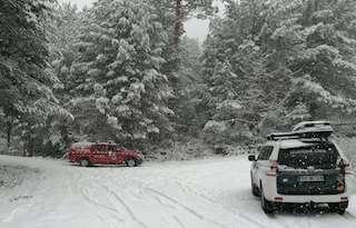 SPN Guardia in the Snow