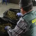 GRA Padul Drug Bust
