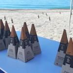 ALM Beach Marker Cones