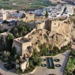 SAL Castle Birdseye