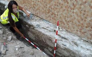 ALM Roman Discovery