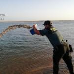 AND Returning Illegal shellfish