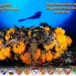 LHR Underwater Photography Competition