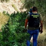 GRA Alpujarra Drugs Bust