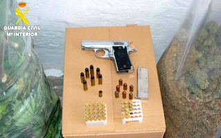 ALM Arrest & Illegal Gun 17AP21