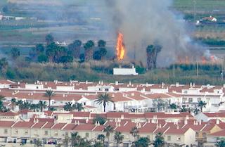 SAL Palm Tree Fire 04AP21