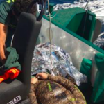 ECO Castell Diver Rescued