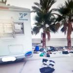 ECO False Tourists Arrested